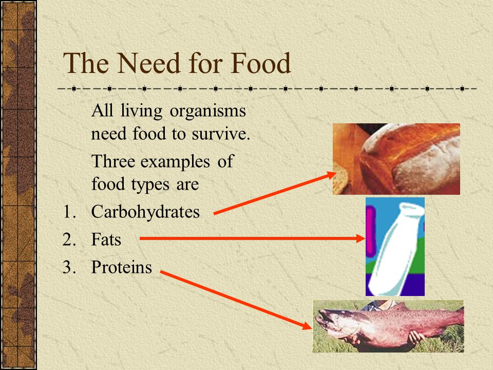 All living organisms need food to survive. Three examples of food types are 1.Carbohydrates 2.Fats 3.Proteins