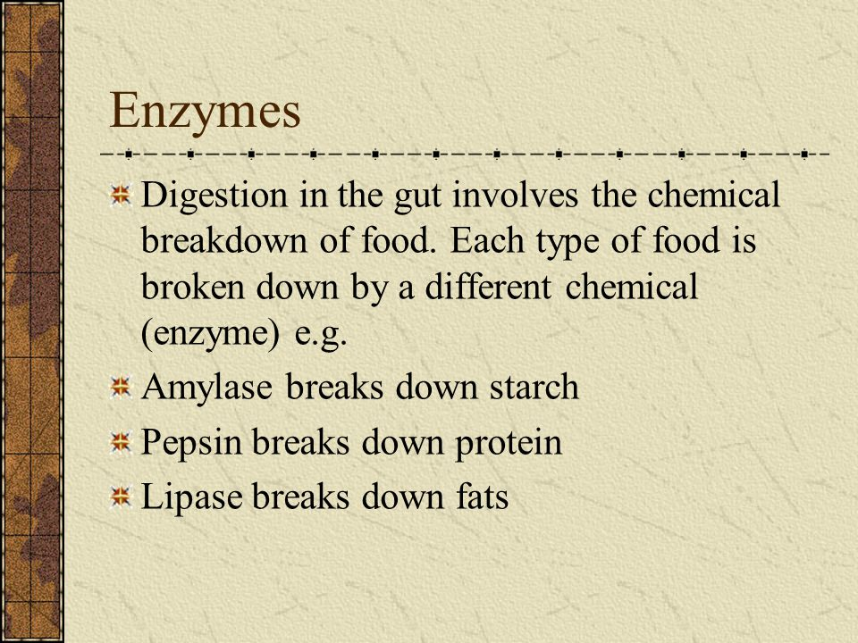 Enzymes Digestion in the gut involves the chemical breakdown of food. Each type of food is broken down by a different chemical (enzyme) e.g. Amylase b