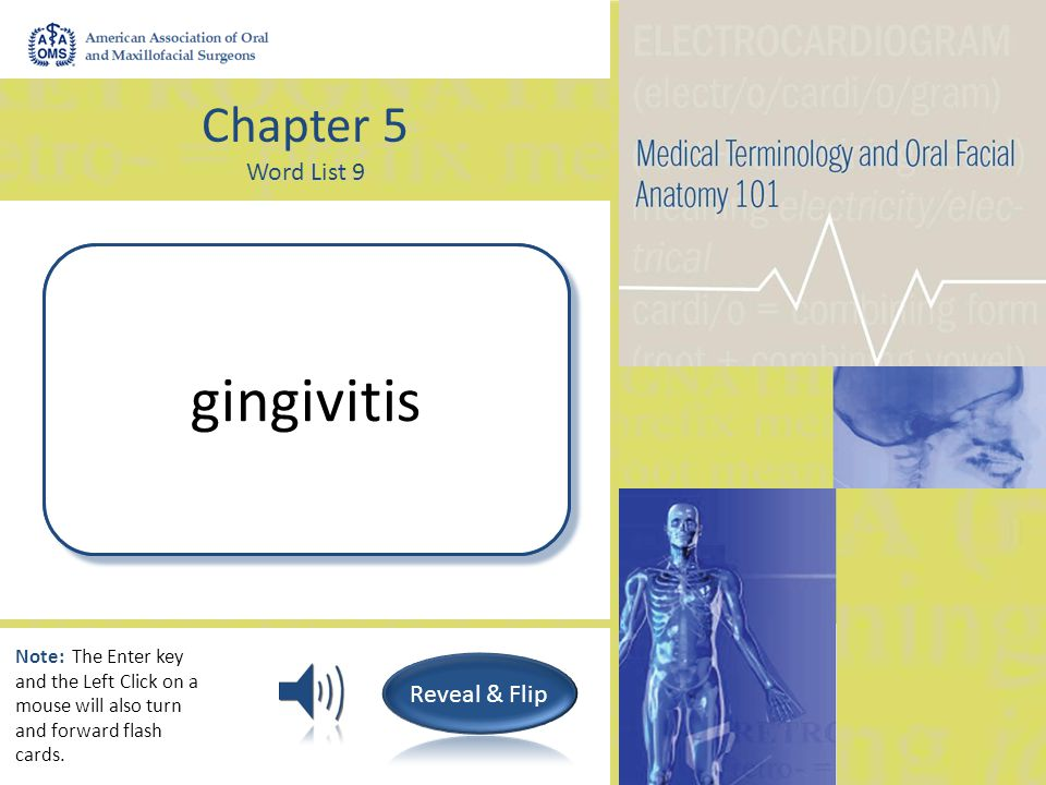 Chapter 5 Word List 9 Surgical repair of the chin genioplasty Note: The Enter key and the Left Click on a mouse will also turn and forward flash cards.