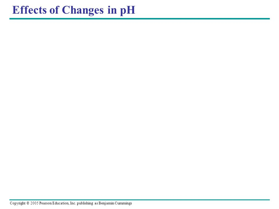 Copyright © 2005 Pearson Education, Inc. publishing as Benjamin Cummings Effects of Changes in pH