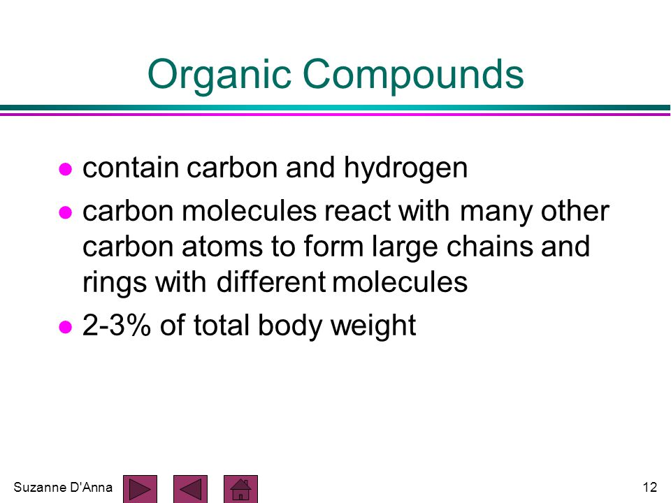 Suzanne D Anna12 Organic Compounds l contain carbon and hydrogen l carbon molecules react with many other carbon atoms to form large chains and rings with different molecules l 2-3% of total body weight