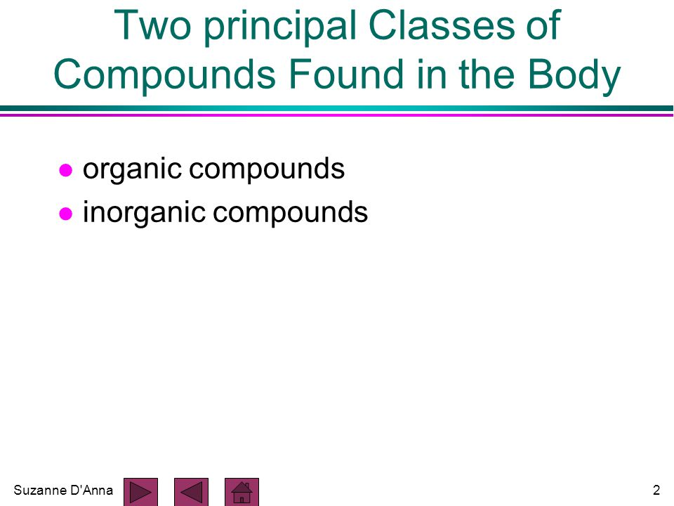 Suzanne D Anna2 Two principal Classes of Compounds Found in the Body l organic compounds l inorganic compounds