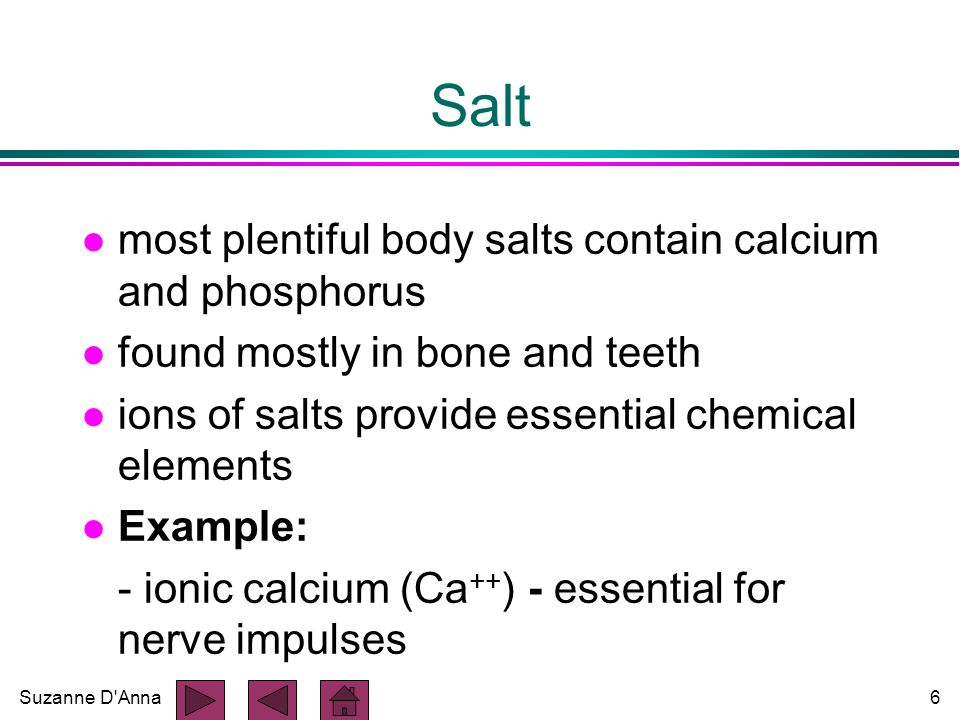 Suzanne D Anna6 Salt l most plentiful body salts contain calcium and phosphorus l found mostly in bone and teeth l ions of salts provide essential chemical elements l Example: - ionic calcium (Ca ++ ) - essential for nerve impulses