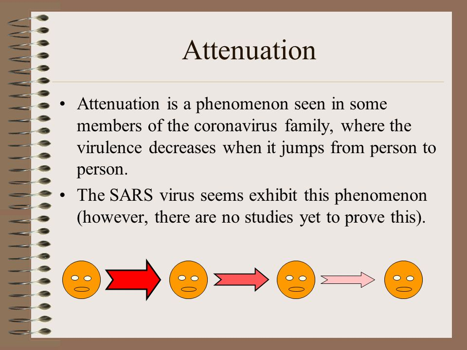 Attenuation Attenuation is a phenomenon seen in some members of the coronavirus family, where the virulence decreases when it jumps from person to person.