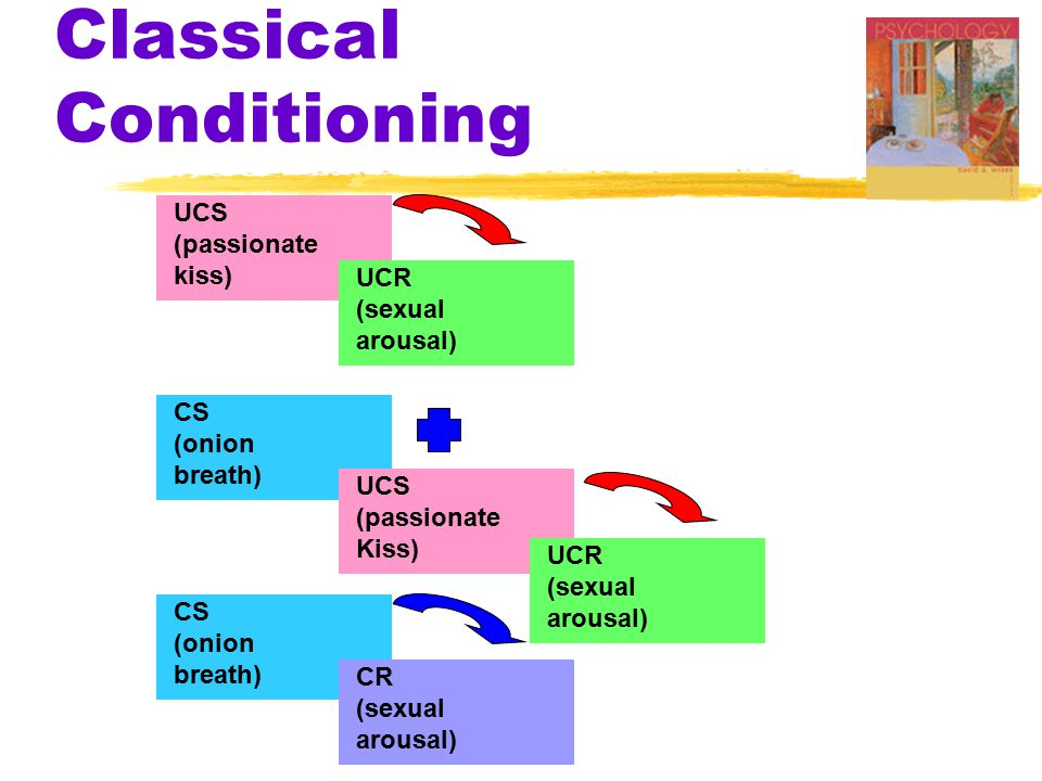 Classical Conditioning UCS (passionate kiss) UCR (sexual arousal) CS (onion breath) CS (onion breath) CR (sexual arousal) UCS (passionate Kiss) UCR (sexual arousal)