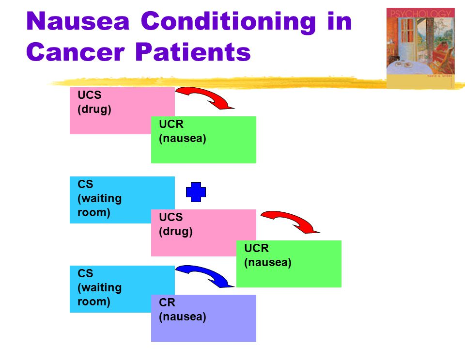 Nausea Conditioning in Cancer Patients UCS (drug) UCR (nausea) CS (waiting room) CS (waiting room) CR (nausea) UCS (drug) UCR (nausea)