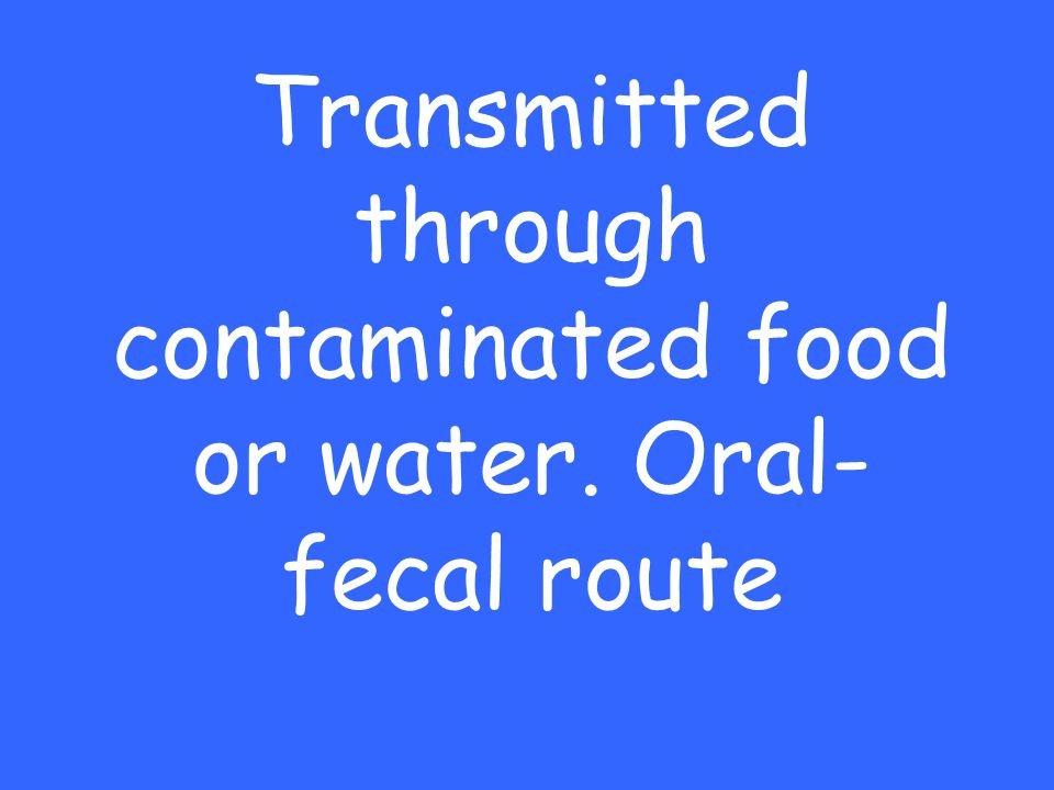 Transmitted through contaminated food or water. Oral- fecal route