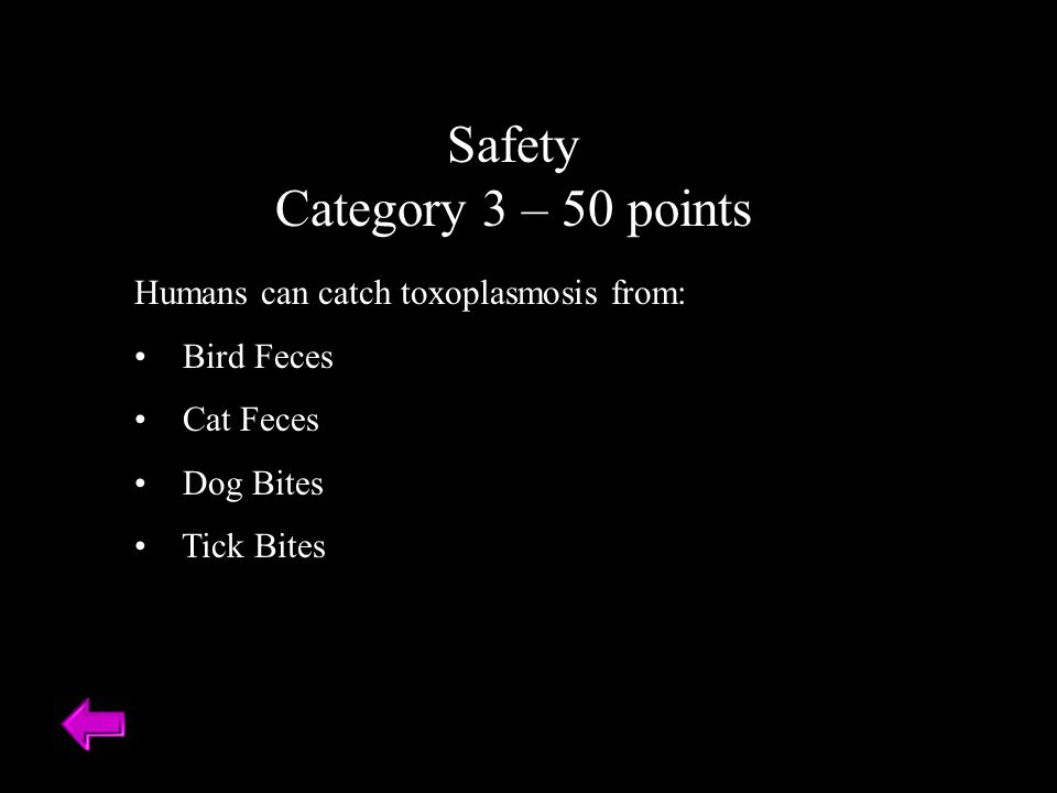 Safety Category 3 – 50 points Humans can catch toxoplasmosis from: Bird Feces Cat Feces Dog Bites Tick Bites