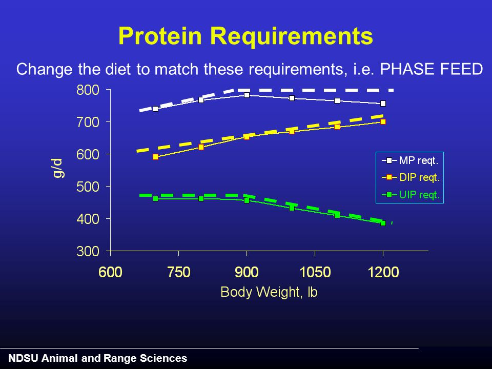NDSU Animal and Range Sciences Change the diet to match these requirements, i.e. PHASE FEED Protein Requirements