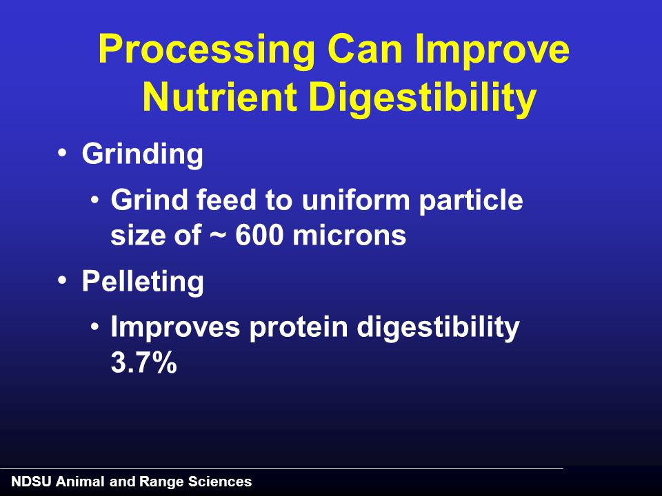 NDSU Animal and Range Sciences Processing Can Improve Nutrient Digestibility Grinding Grind feed to uniform particle size of ~ 600 microns Pelleting I