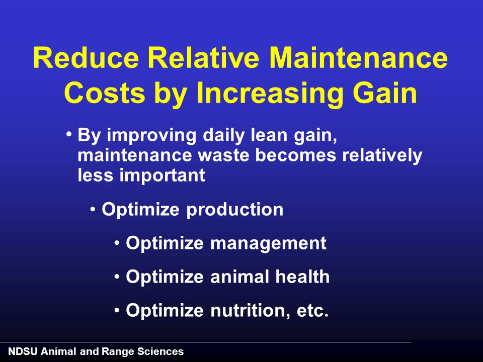 NDSU Animal and Range Sciences Reduce Relative Maintenance Costs by Increasing Gain By improving daily lean gain, maintenance waste becomes relatively