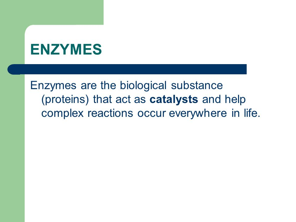 ENZYMES Enzymes are the biological substance (proteins) that act as catalysts and help complex reactions occur everywhere in life.