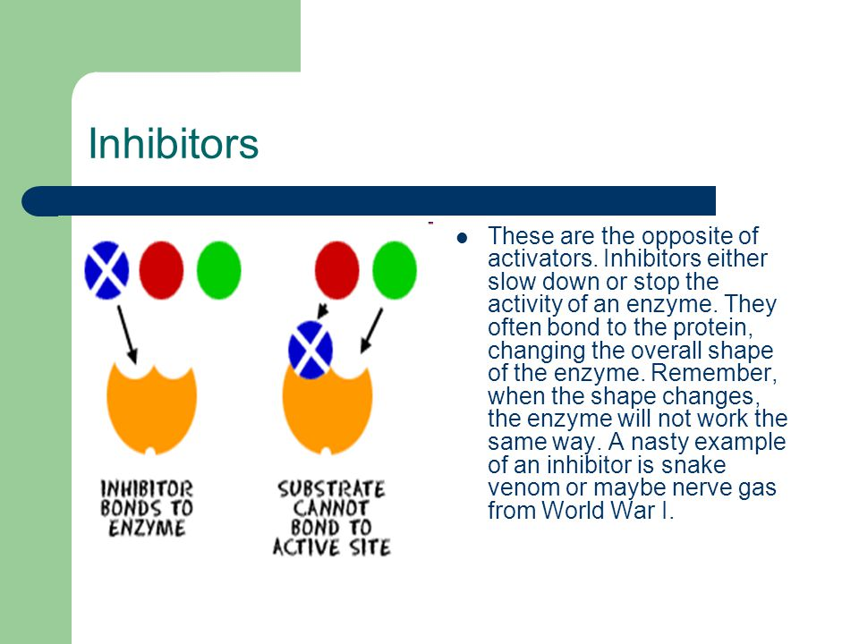 Inhibitors These are the opposite of activators.