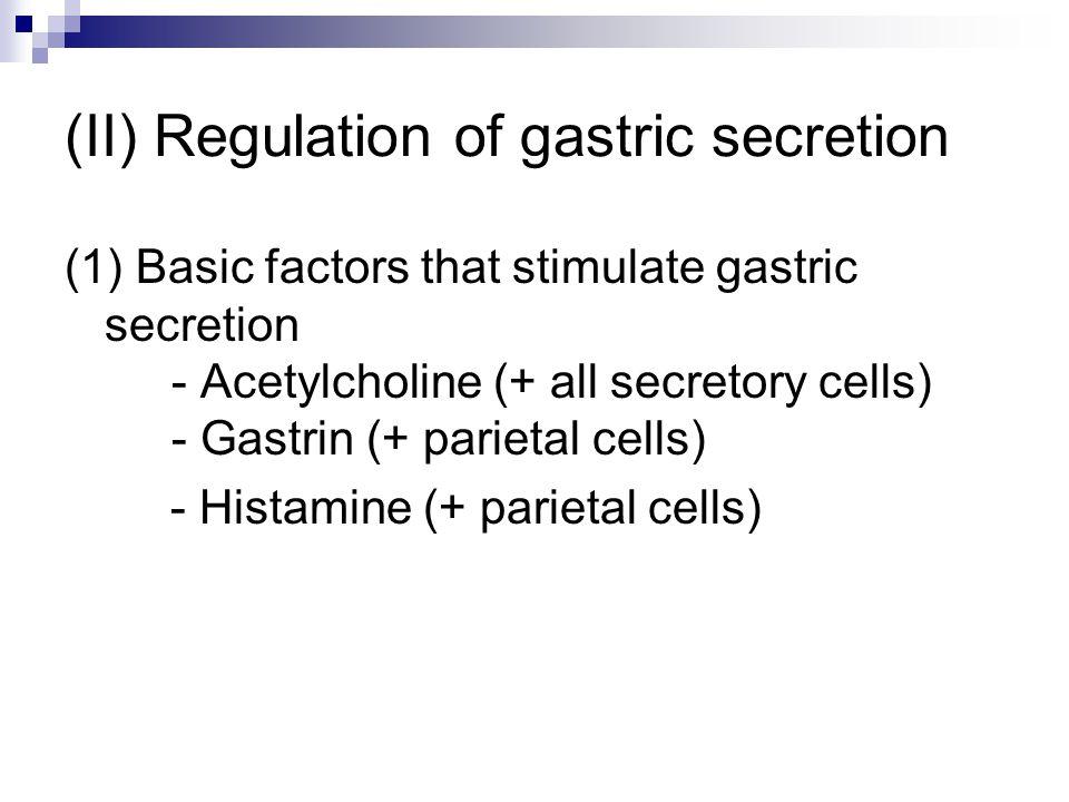 (II) Regulation of gastric secretion (1) Basic factors that stimulate gastric secretion - Acetylcholine (+ all secretory cells) - Gastrin (+ parietal
