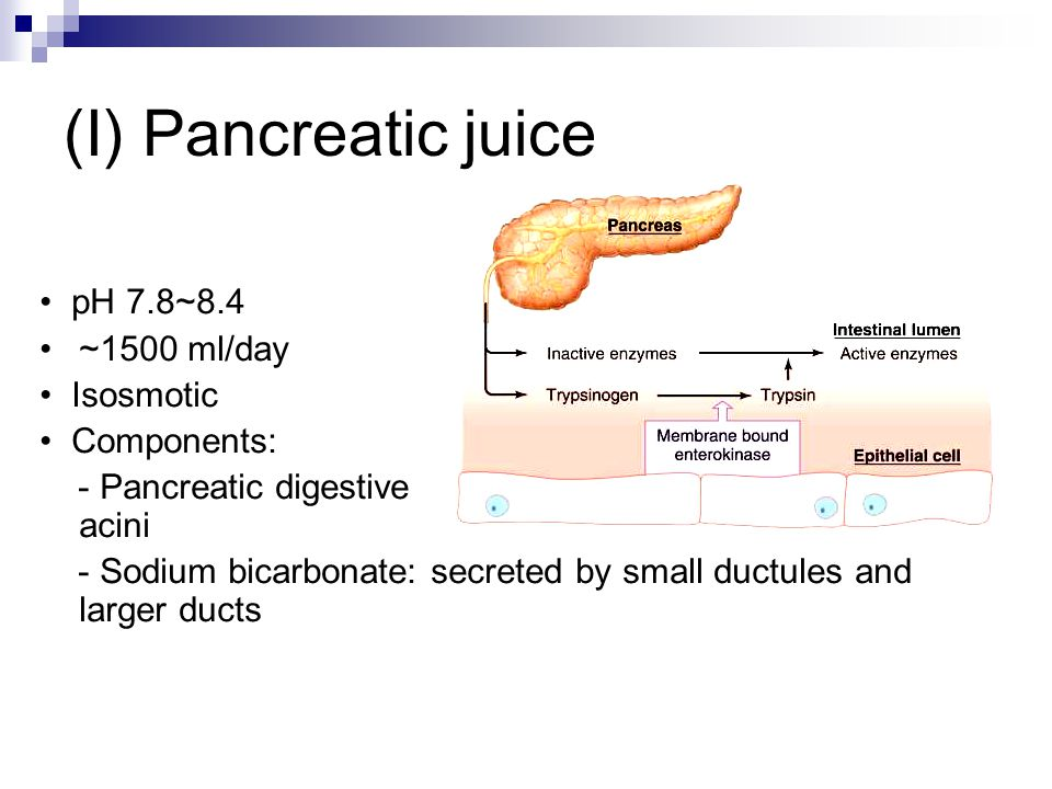 (I) Pancreatic juice pH 7.8~8.4 ~1500 ml/day Isosmotic Components: - Pancreatic digestive enzymes: secreted by pancreatic acini - Sodium bicarbonate: secreted by small ductules and larger ducts