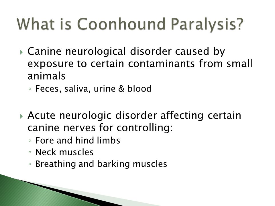  Canine neurological disorder caused by exposure to certain contaminants from small animals ◦ Feces, saliva, urine & blood  Acute neurologic disorder affecting certain canine nerves for controlling: ◦ Fore and hind limbs ◦ Neck muscles ◦ Breathing and barking muscles