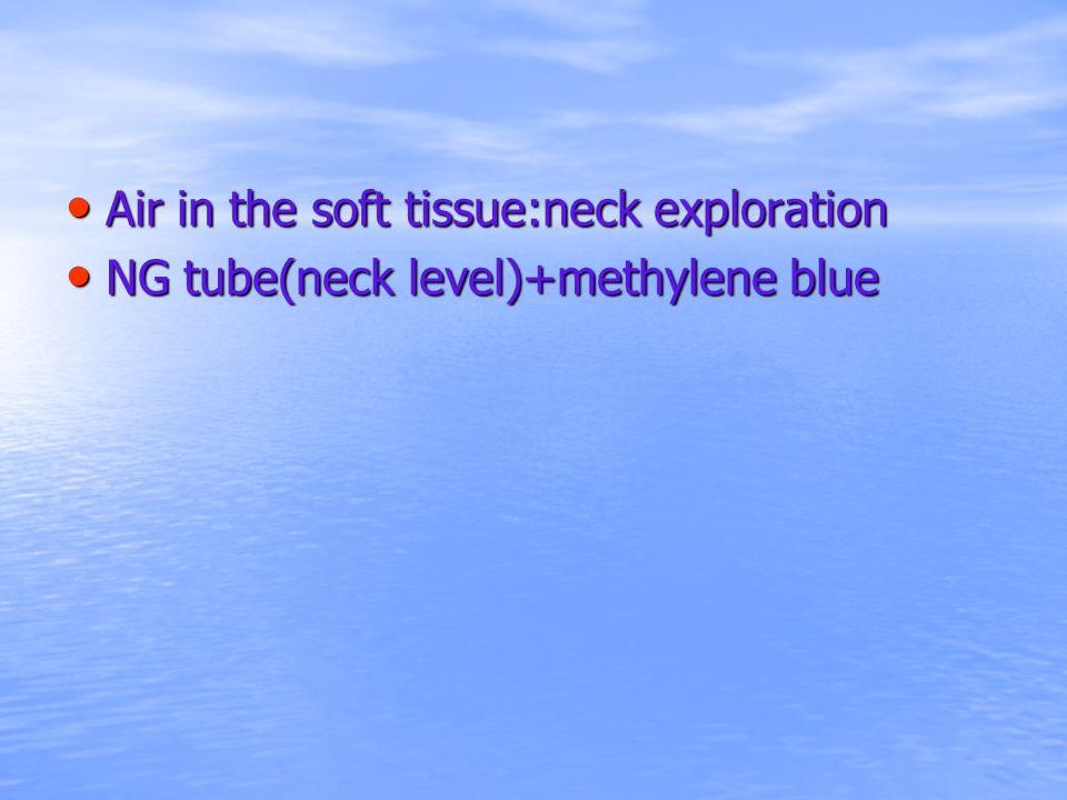 Air in the soft tissue:neck exploration NG tube(neck level)+methylene blue