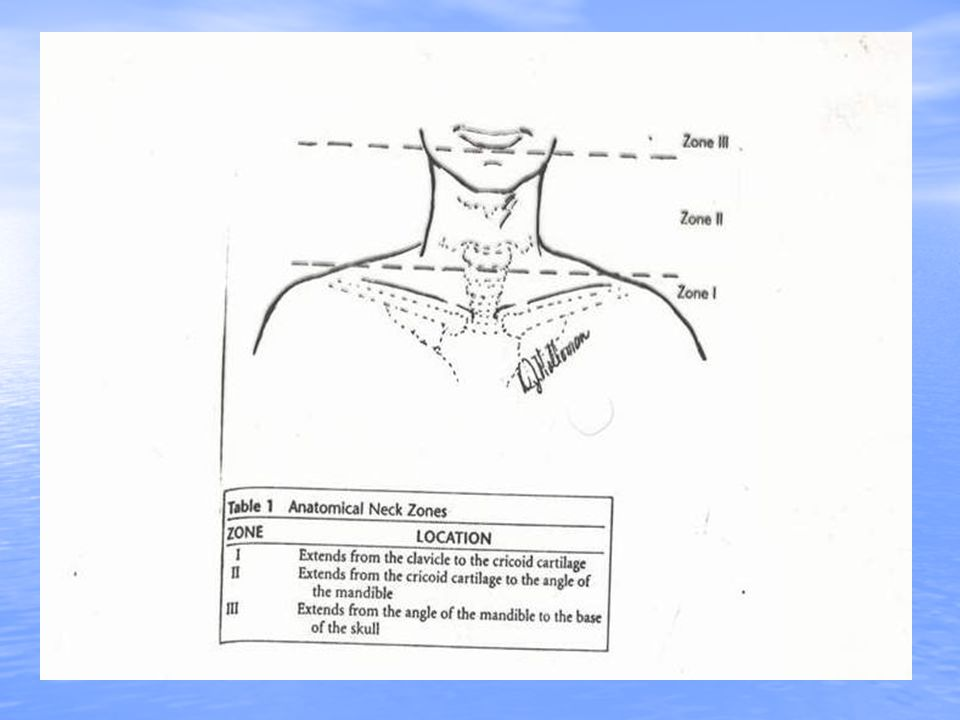 Zone I : 1-Close proximity to thorax (dangerous) 1-Close proximity to thorax (dangerous) 2-Protect by bony thorax and clavicle 2-Protect by bony thorax and clavicle 3-Surgical exploration is difficult 3-Surgical exploration is difficult 4-Mortality 12% 4-Mortality 12% 5-Mandatory exploration is not 5-Mandatory exploration is not recommended recommended 6-Angiography 6-Angiography 7-Right side : median sternotomy 7-Right side : median sternotomy 8-Left side : left anterior thoracotomy 8-Left side : left anterior thoracotomy