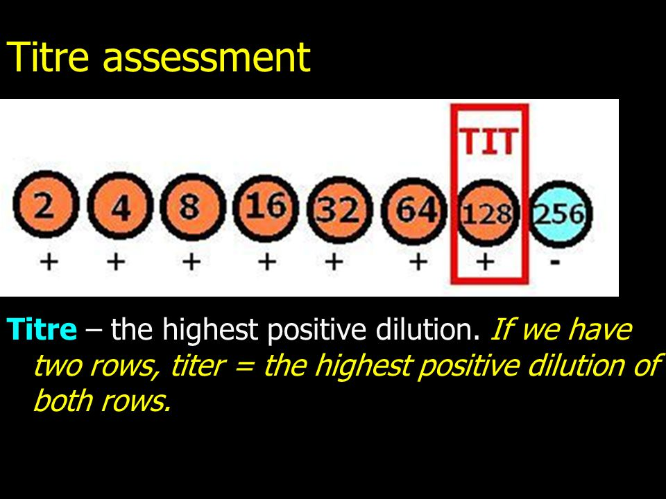 Titre assessment Titre – the highest positive dilution.