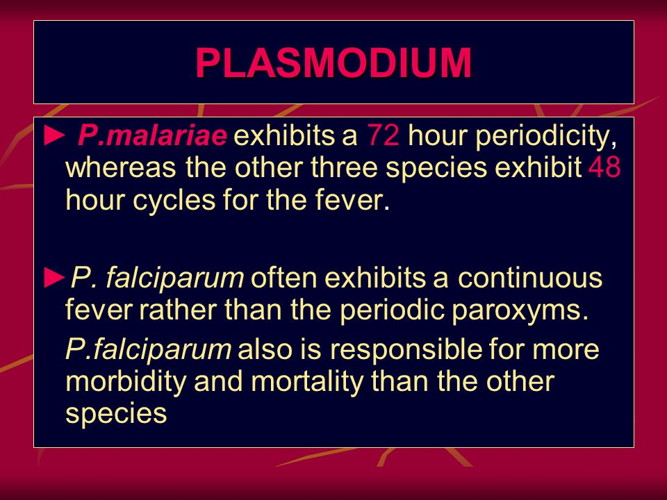 PLASMODIUM ► P.malariae exhibits a 72 hour periodicity, whereas the other three species exhibit 48 hour cycles for the fever.