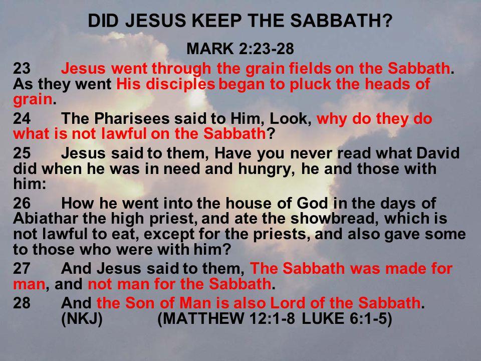 DID JESUS KEEP THE SABBATH. MARK 2:23-28 23Jesus went through the grain fields on the Sabbath.