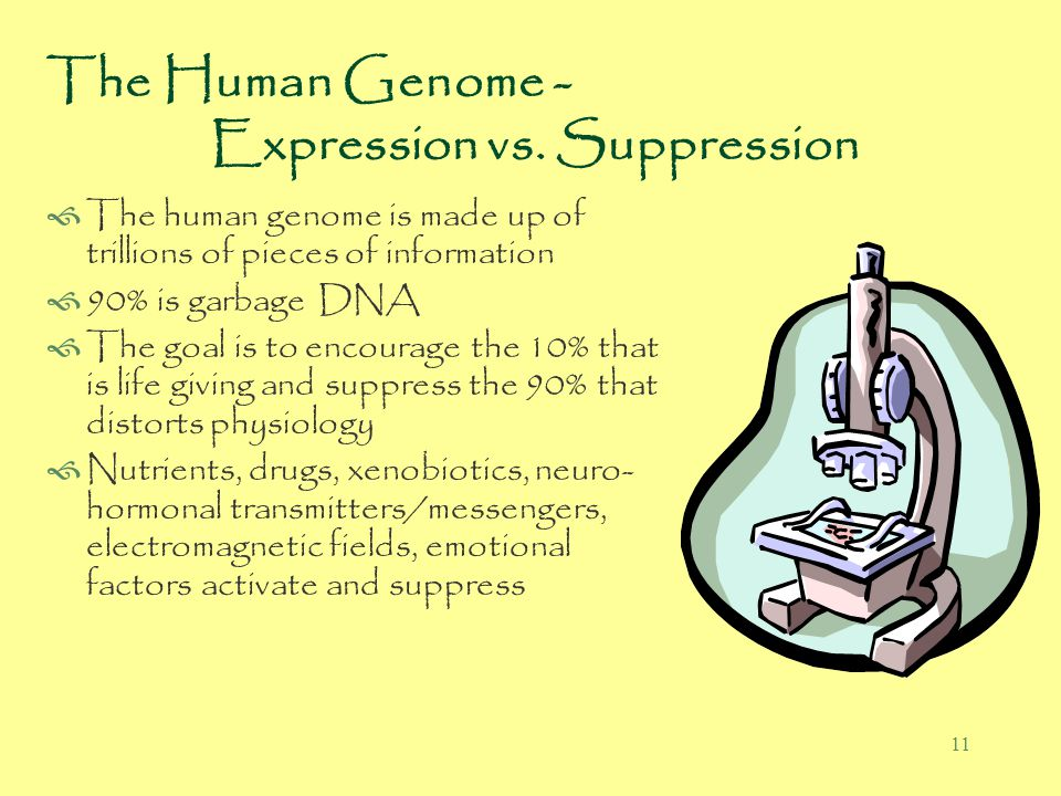 11 The Human Genome - Expression vs.