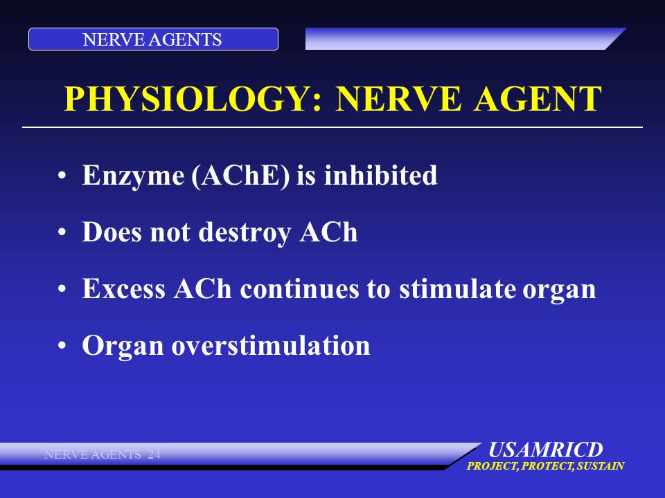 NERVE AGENTS USAMRICD PROJECT, PROTECT, SUSTAIN NERVE AGENTS 24 PHYSIOLOGY: NERVE AGENT Enzyme (AChE) is inhibited Does not destroy ACh Excess ACh con