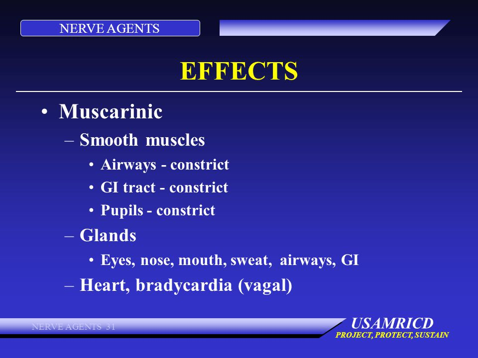 NERVE AGENTS USAMRICD PROJECT, PROTECT, SUSTAIN NERVE AGENTS 31 EFFECTS Muscarinic –Smooth muscles Airways - constrict GI tract - constrict Pupils - c