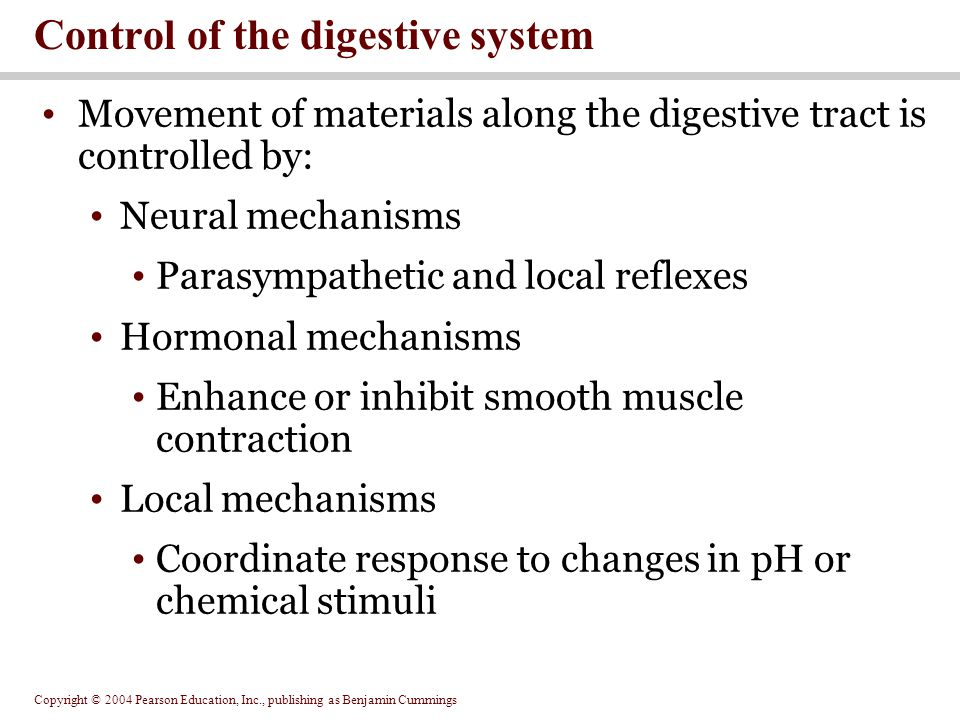 Copyright © 2004 Pearson Education, Inc., publishing as Benjamin Cummings Movement of materials along the digestive tract is controlled by: Neural mec