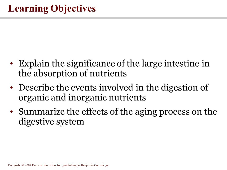 Copyright © 2004 Pearson Education, Inc., publishing as Benjamin Cummings SECTION 24-1 The Digestive System