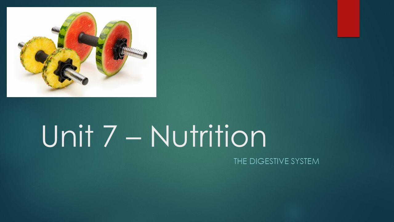 Unit 7 – Nutrition THE DIGESTIVE SYSTEM
