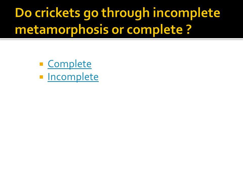  Complete Complete  Incomplete Incomplete