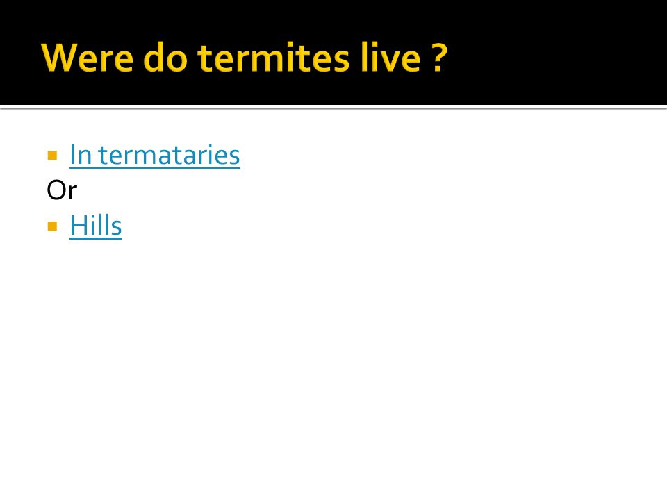  In termataries In termataries Or  Hills Hills