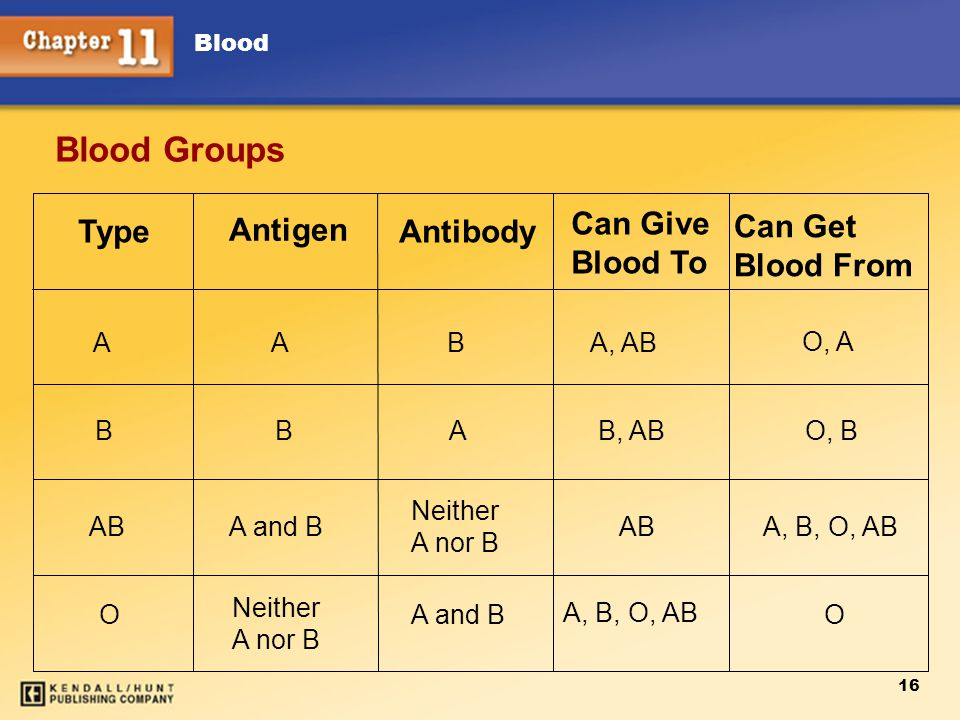 Blood 16 Blood Groups Type Antigen Antibody Can Give Blood To Can Get Blood From A B AB O A B A and B Neither A nor B B A Neither A nor B A and B A, AB O, A B, ABO, B AB A, B, O, AB O