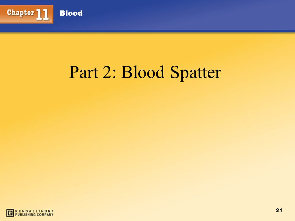 Blood 21 Part 2: Blood Spatter