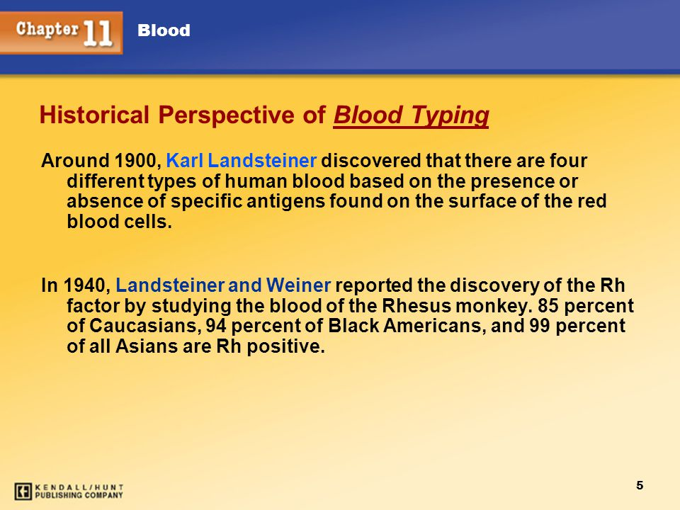 Blood 5 Historical Perspective of Blood Typing Around 1900, Karl Landsteiner discovered that there are four different types of human blood based on the presence or absence of specific antigens found on the surface of the red blood cells.