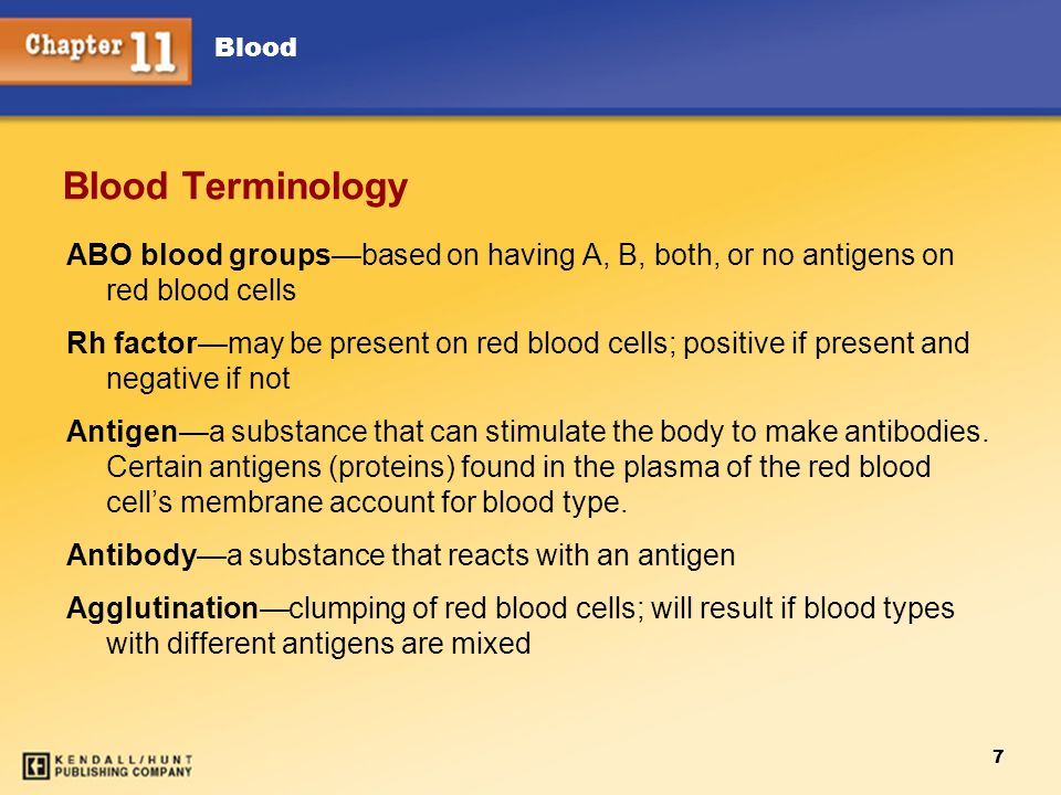 Blood 7 Blood Terminology ABO blood groups—based on having A, B, both, or no antigens on red blood cells Rh factor—may be present on red blood cells; positive if present and negative if not Antigen—a substance that can stimulate the body to make antibodies.