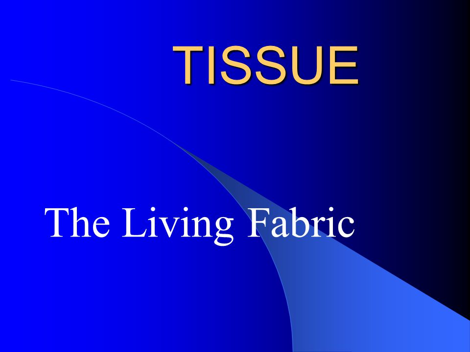 TISSUE The Living Fabric