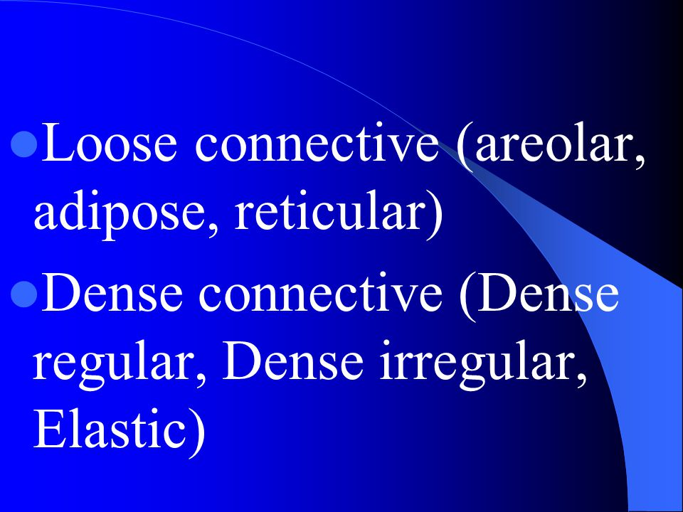 Loose connective (areolar, adipose, reticular) Dense connective (Dense regular, Dense irregular, Elastic)
