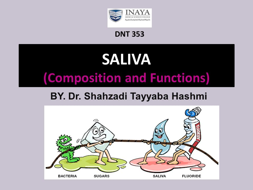 SALIVA (Composition and Functions) BY. Dr. Shahzadi Tayyaba Hashmi DNT 353