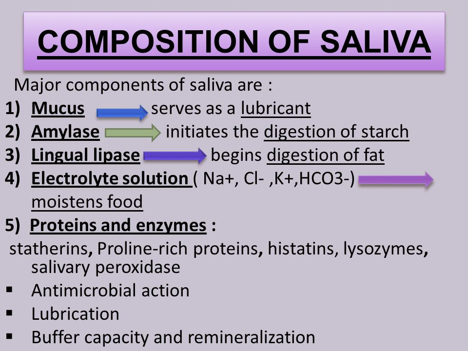 COMPOSITION OF SALIVA Major components of saliva are : 1)Mucus serves as a lubricant 2)Amylase initiates the digestion of starch 3)Lingual lipase begins digestion of fat 4)Electrolyte solution ( Na+, Cl-,K+,HCO3-) moistens food 5) Proteins and enzymes : statherins, Proline-rich proteins, histatins, lysozymes, salivary peroxidase  Antimicrobial action  Lubrication  Buffer capacity and remineralization