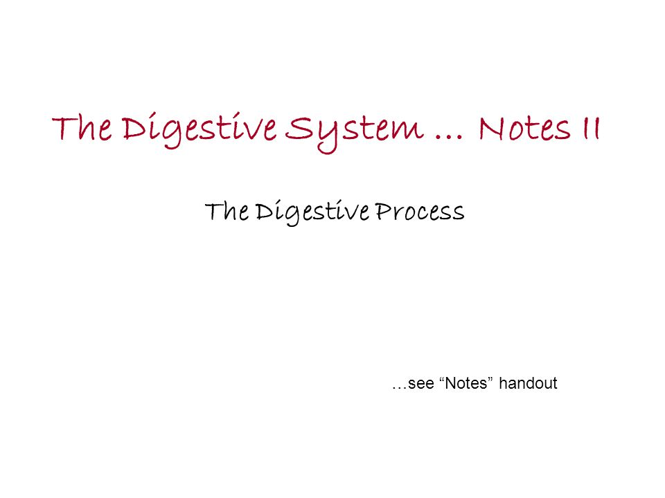 """The Digestive System … Notes II The Digestive Process …see """"Notes"""" handout"""