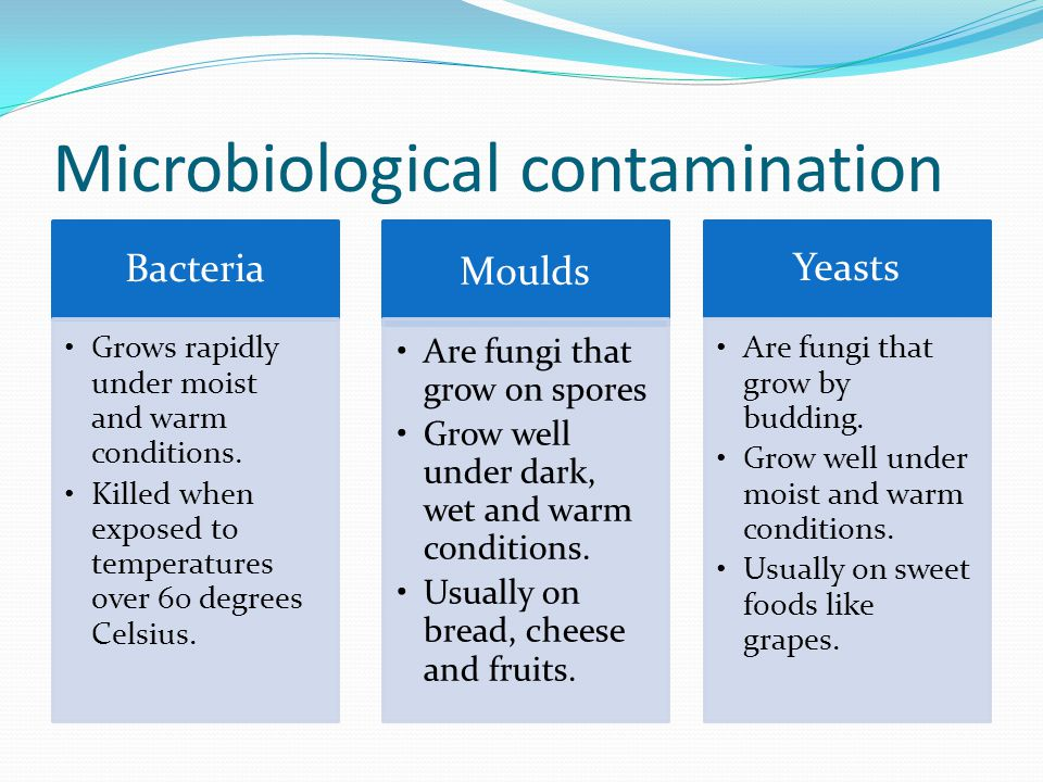 Microbiological contamination Bacteria Grows rapidly under moist and warm conditions.