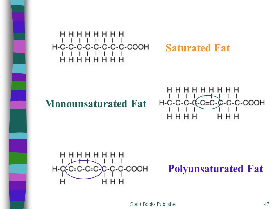 Sport Books Publisher47 Saturated Fat Monounsaturated Fat Polyunsaturated Fat