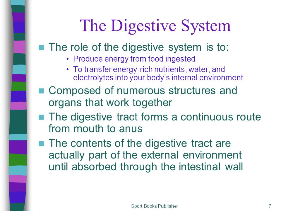 Sport Books Publisher7 The Digestive System The role of the digestive system is to: Produce energy from food ingested To transfer energy-rich nutrient