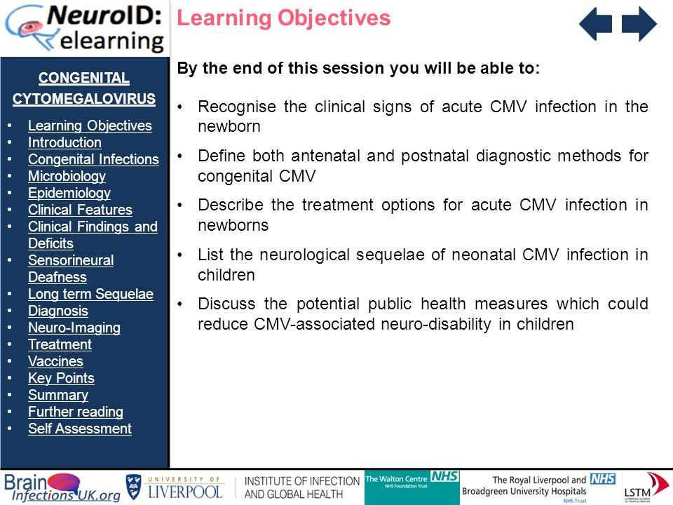 CONGENITAL CYTOMEGALOVIRUS Learning Objectives Introduction Congenital Infections Microbiology Epidemiology Clinical Features Clinical Findings and De