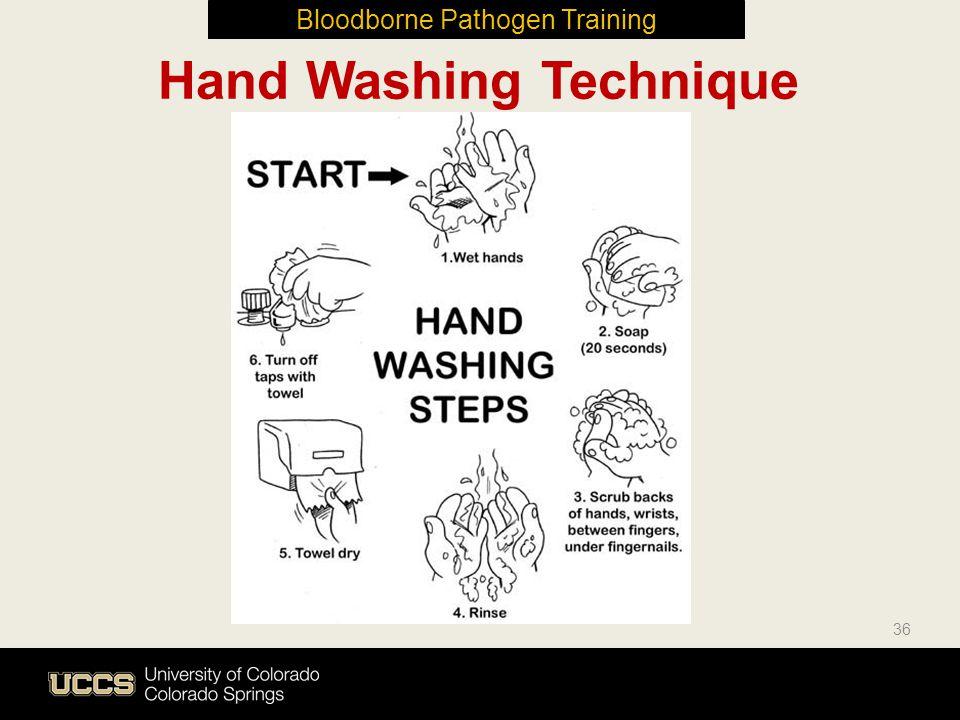 36 Hand Washing Technique Bloodborne Pathogen Training