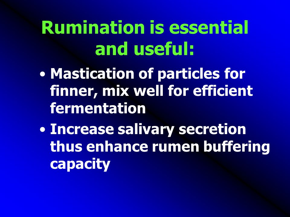 Rumination is essential and useful: Mastication of particles for finner, mix well for efficient fermentation Increase salivary secretion thus enhance