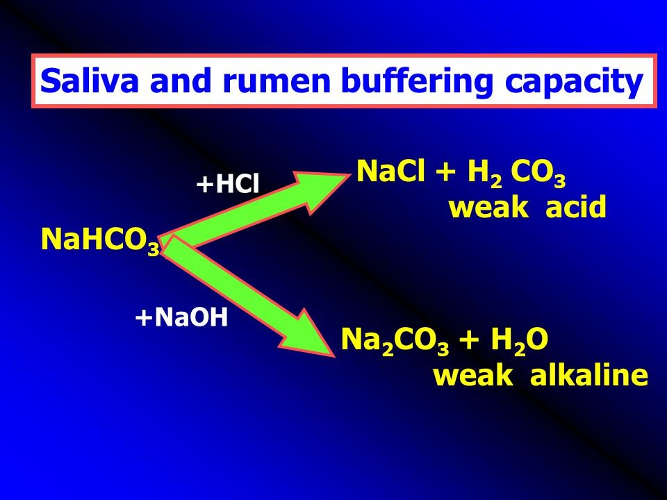 Saliva and rumen buffering capacity NaHCO 3 NaCl + H 2 CO 3 weak acid Na 2 CO 3 + H 2 O weak alkaline +NaOH +HCl