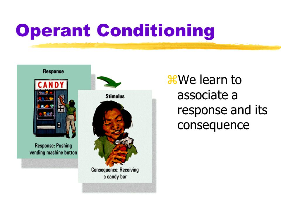 Operant Conditioning zWe learn to associate a response and its consequence